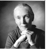Jane Goodall Speaker